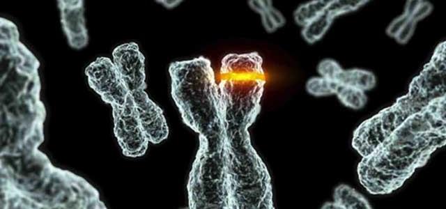 biologia molecolare del cancro